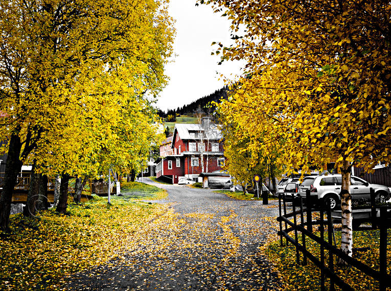 Are, autumn, autumn leaves, Jamtland, samhällen, seasons, street