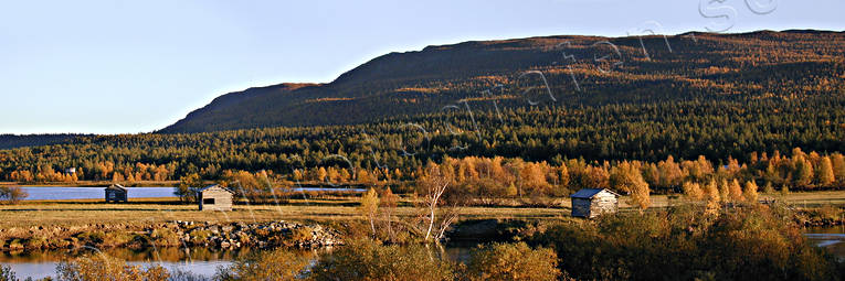 Ammarnas, autumn, autumn colours, barns, evening, landscapes, Lapland, panorama, panorama pictures, Ribovardo