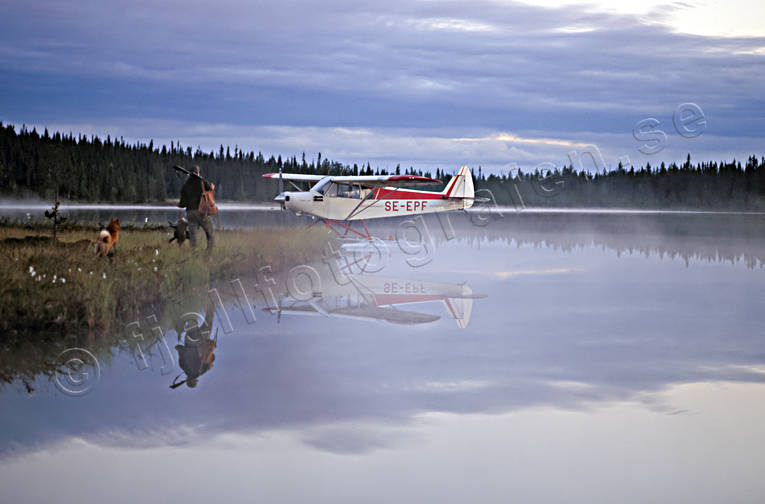 aeroplane, barking bird dog, barking bird dog, bird hunter, bird hunting, fly, hunter, hunting, landscapes, Lapland, seaplane, seaplane, wasteland, wilderness, öga*