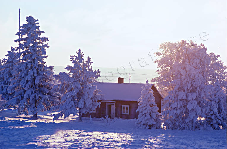 ambience, ambience pictures, atmosphere, cabins, christmas ambience, christmas card, cottage, Jamtland, snow, winter