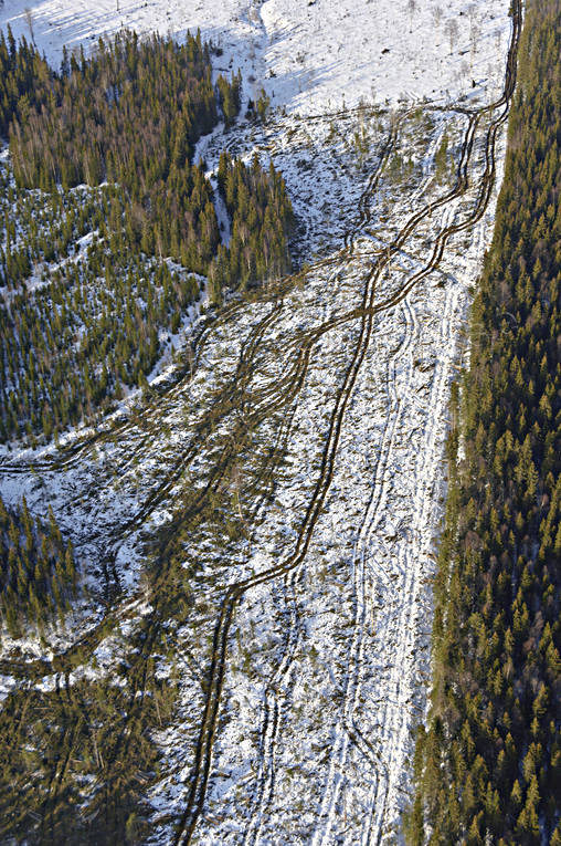 aerial photo, aerial photo, aerial photos, aerial photos, clear-felled area, cutting area, drone aerial, drönarfoto, environment, felling, forestry, logging, nature, skogshygge, wheel-track, woodland, work