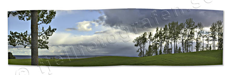 arable land, early, greenery, gröna kullar, Jamtland, landscapes, panorama, panorama pictures, Rodon, summer