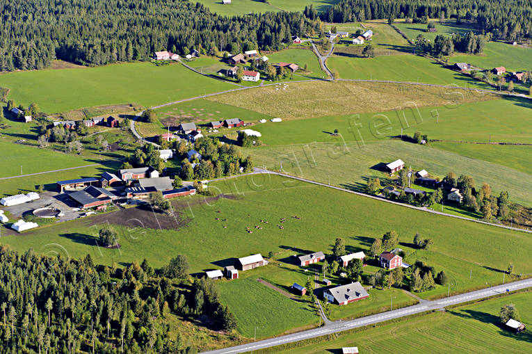aerial photo, aerial pictures, countryside, drone aerial, farms, Jamtland, kläppe, summer