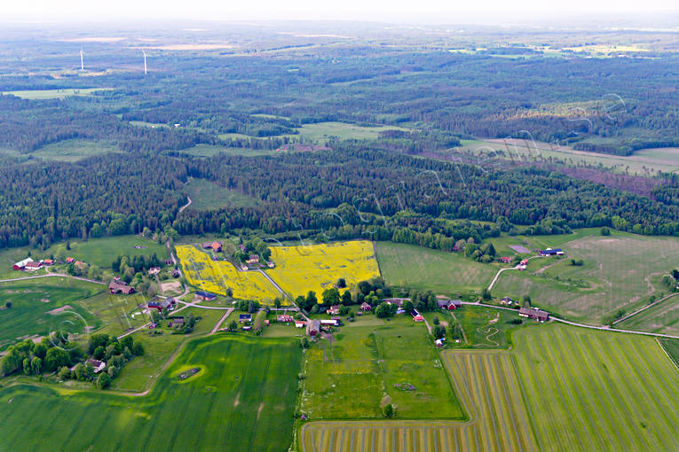 aerial photo, aerial photo, aerial photos, aerial photos, agriculture district, buildings, drone aerial, drönarfoto, farms, landscapes, rapsfält, Sjötorp, Slättervalla, summer, village, villages, Västergötland