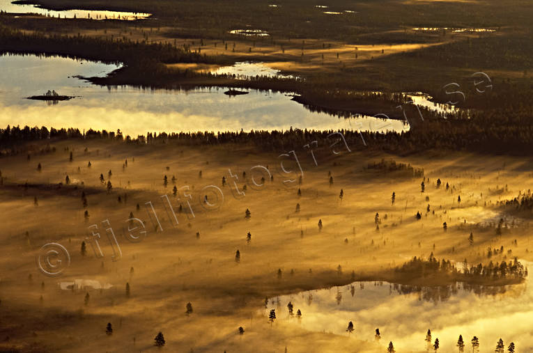 aerial photos, aerial picture, aerial pictures, ambience, ambience pictures, atmosphere, autumn, bog soil, cloud, flygbilder, fog, gold, landscapes, Lapland, mire, moory soil, season, seasons, Sweden, uninhabited, wasteland, wilderness, woodland, yellow