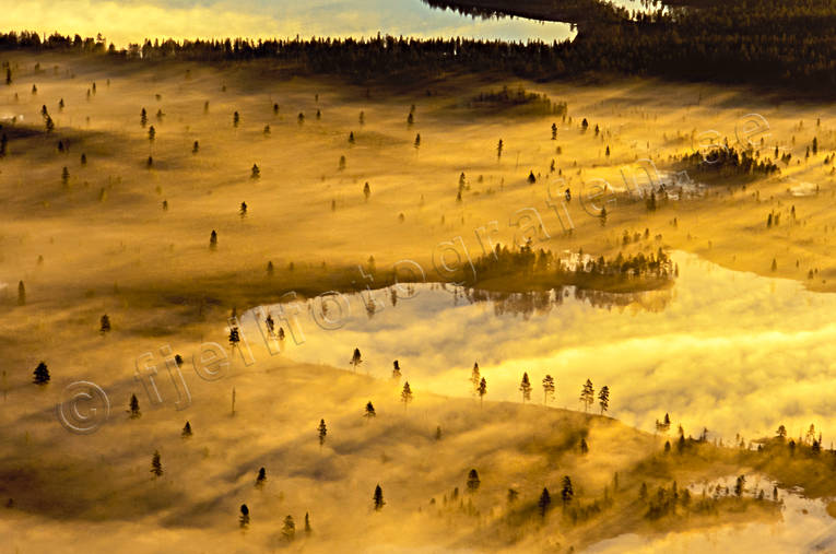 aerial photo, aerial photo, aerial photos, aerial photos, ambience, ambience pictures, Apmokuoika, atmosphere, autumn, bog soil, cloud, drone aerial, drönarfoto, fog, gold, landscapes, Lapland, marsh lands, mire, moory soil, mountain pictures, naturreservat, season, seasons, Sweden, Tjeggelvas, uninhabited, wasteland, wilderness, woodland, yellow