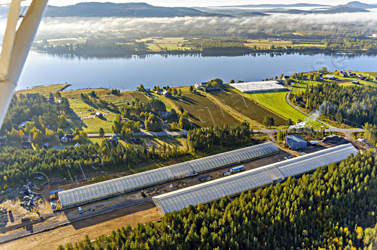 aerial photo, aerial photo, aerial photos, aerial photos, autumn, buildings, drone aerial, drönarfoto, engineering projects, farms, greenhouse, gurkodling, Hietalas Handelsträdgård, installations, Korva, North Bothnia, polar circle, tomatodling