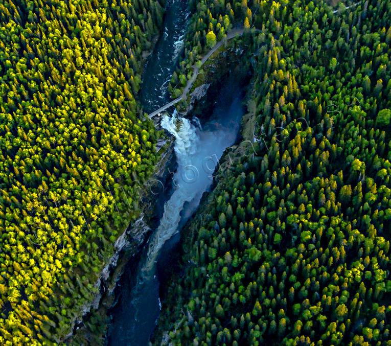 aerial photo, aerial photo, aerial photos, aerial photos, attractions, canyon, drone aerial, drönarfoto, Hällingsåfallet, Jamtland, kanjon, landscapes, summer, Swedish Mountains, water fall