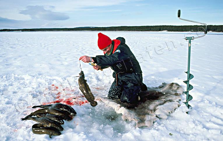 озеро матриярви рыбалка