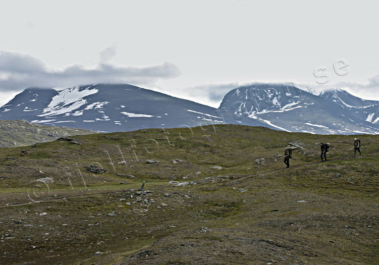 alpine, alpine hiking, back-packer, landscapes, Lapland, mountain, mountains, national park, nature, Padjelanta, sommarfjäll, summer, wild-life