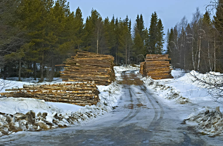 cartway, communications, forest motor road, forestry, land communication, pile of timber, pulp wood, road, timber, timber, timber stock, winter road, woodland, work