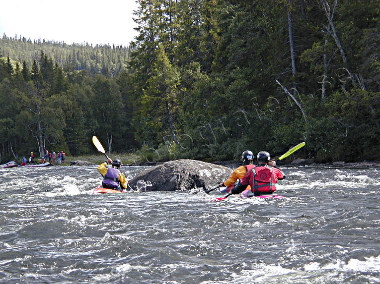 outdoor life, paddling, rafting, summer, water sports, white-water rafting, wild-life, äventyr