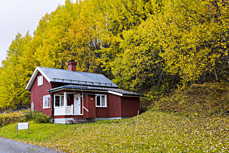 autumn, autumn colours, autumn leaves, buildings, cabins, cottage, Jamtland, leisure house