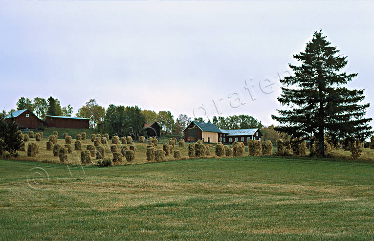 agriculture, arable land, crop land, drying racks, farm, hay drying rack, rick drying rack, rick drying racks, work