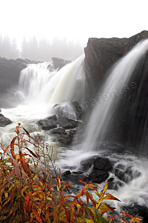 attractions, autumn, Jamtland, Ristafallet, Rista Fall, season, seasons, water fall
