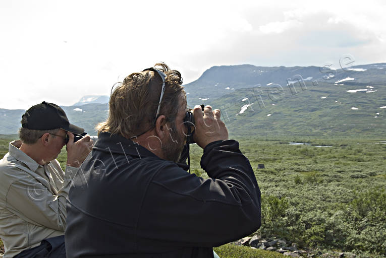 alpine hiking, back-packer, back-packing, binuculars, looking out for with binoculars, mountain, Sarek, sightings, summer, äventyr