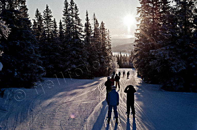down-hill running, Jamtland, landscapes, playtime, skier, winter, woodland, äventyr