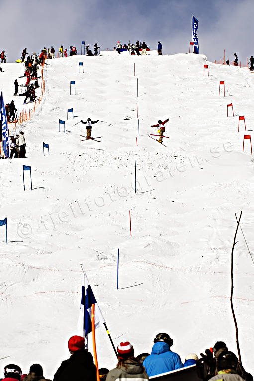 audience, competition, down-hill running, hump, humps, mogul, parallel, playtime, skier, skies, skiing, skiing contest, sport, tävlingsbana, winter