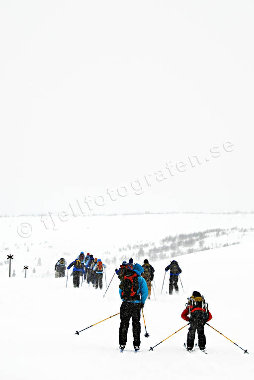 backcountry skiers, down-hill running, fog, playtime, ski touring, skier, skies, skiing, sport, storm, track, winter