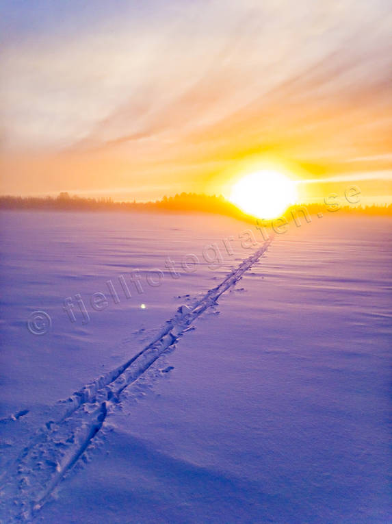canvastavla, fototavla, Jamtland, landscapes, skiing tracks, snow, sunset, tavla, winter