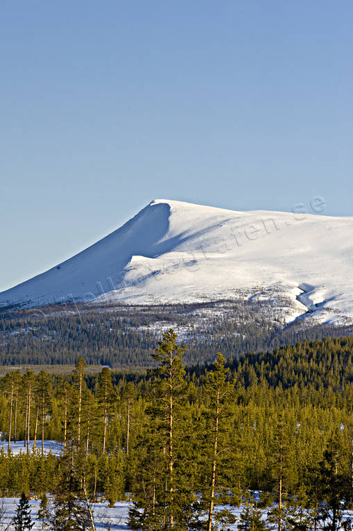 alp, Herjedalen, landscapes, mountain, mountain forest, near mountains, Sonfjället, winter, woodland