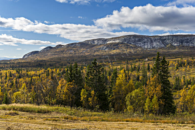 autumn, autumn colours, Jamtland, landscapes, mountain, mullfjallet, seasons, Ullådalen