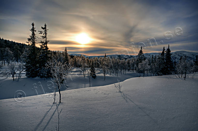 Blåsjöfjället, Jamtland, landscapes, mountain forest, nature, seasons, sky, sun, view, winter