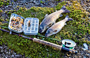 angling, fishing, fly box, fly rod, flyfishing, trouts