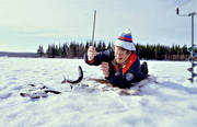 angling, fishing, fishing, ice fishing, ice fishing, ice fishing, jig, dap, spring ice, whitefish, winter fishing