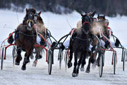 Are, Are lake, horse, horses, ice trot, sport, travhästar, travsport, trot, various, winter