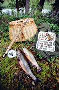 angling, brook trout, brook char, fishing, fly box, fly rod, flyfishing