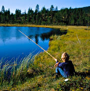 angling, angling, boy, fishing, forest tarn, summer