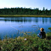 angling, angling, boy, fishing, fishing, fishing rod, to angle, Vall lake