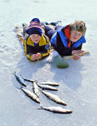 angling, fishing, fishing through ice, ice fishing, ice fishing, ice fishing, jig, dap, whitefish, whitefish fishery, winter fishing