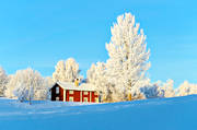 atmosphere, buildings, cabins, cottage, Jamtland, season, seasons, winter