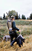 apporter, crow, crow hunting, decoy hunting, game management, hunting, kråkfågel, shooting, uvbulvan