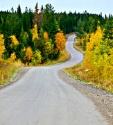 autumn, autumn colours, canvastavla, communications, crooked, curvy, fototavla, gravel road, Jamtland, kurvor, land communication, landscapes, road, road curve, season, seasons, slingrande, tavla