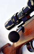aiming telescope, general hunting, hunting, hunting weapon, rifle, shooting, tailpiece, weapon