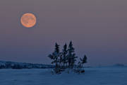 ambience, ambience pictures, atmosphere, dusk, full moon, landscapes, moon, moonlight, nature, seasons, vinterbild, winter, winter ambience