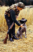 apport, apport, crow hunter, crow hunting, german shorthaired pointer, hunting, kråkfågel