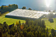 aerial photo, aerial pictures, autumn, buildings, drone aerial, farms, greenhouse, gurkodling, Hietalas Handelsträdgård, installations, Korva, North Bothnia, polar circle, tomatodling
