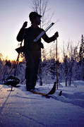bird hunting, capercaillie, capercaillie hunting, capercaillie hunting, dawn, hunting, skidior, sled, sunrise, vinte, winter