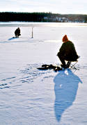 angling, burbot fishing, fishing, ice fishing, ice fishing, lake, winter fishing