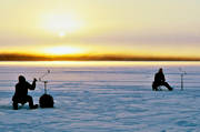 angling, cat throat, cold, cold, fishing, ice fishing, ice fishing, jig, dap, perch, perch fishing, sunset, winter fishing