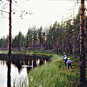 angles, angling, angling, fishing, forest tarn