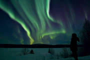 nature, northern lights, polar lights, polar night, season, seasons, sky, winter