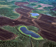 aerial photo, aerial pictures, conservation, drone aerial, energy, environment, environmental damage, environmental influence, extract, extraction, landscapes, marsh salvage, mire, nature, peat bog, peat harvesting, peat, turf, pollution