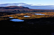 aerial photo, aerial pictures, autumn, autumn colours, autumn mountain, drone aerial, evening, Falkvalen, Hottogsfjallet, Jamtland, lakes, landscapes, meres, mountain lakes, mountain pictures, mountain tarns, mountains, naturreservat, Rulldalen, Rullån, vattenspeglar, Öringsjön