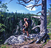 alpine landscape, bicyclist, bike, bikes, biking, dead tree, fjällcykling, Jamtland, landscapes, mountain, mountain nature, mountainbike, nature, outdoor life, season, seasons, sommarfjäll, sport, summer, terrängcykel, wild-life