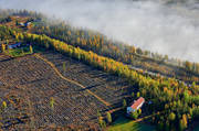 aerial photos, aerial picture, aerial pictures, autumn, cabins, flygbilder, North Bothnia